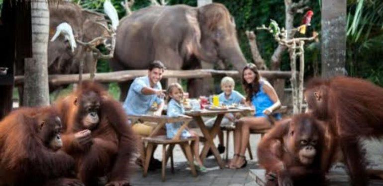 Bali Family Holiday